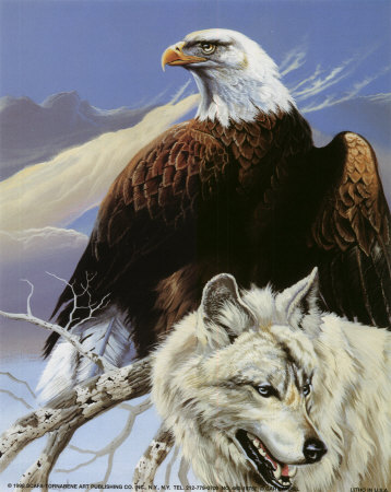 Animals achtergrond called The Eagle and the wolf