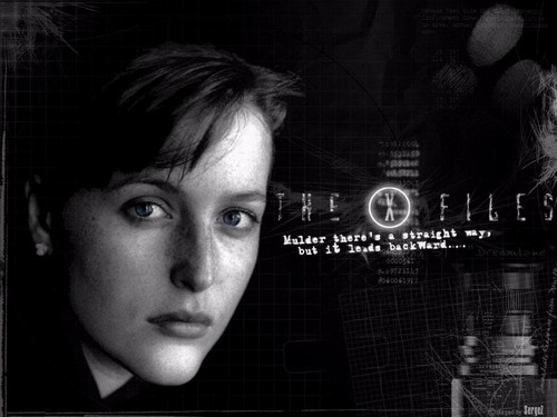 The X-Files wallpaper possibly containing a sign called The X-Files