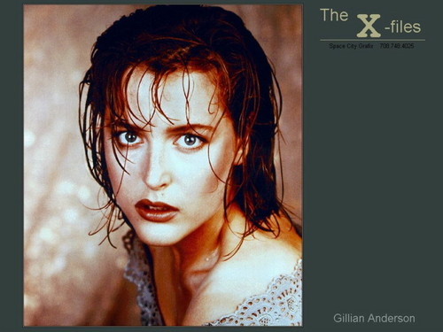 The X-Files wallpaper with a portrait entitled The X-Files