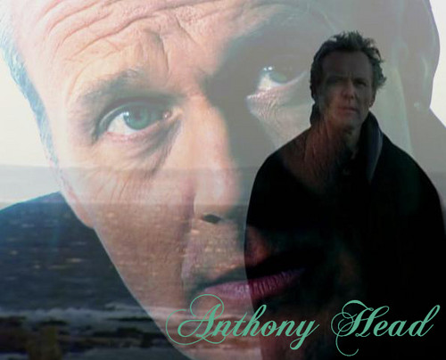 Tony <3