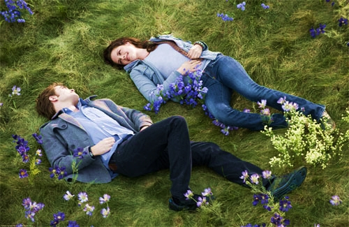 Twilight Meadow <3