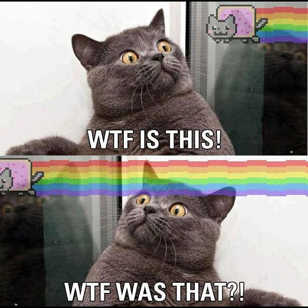 Nyan Cat WTF was that
