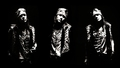 William Bruce Axl - axl-rose wallpaper