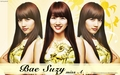 bae suzy miss A - dara-2ne1 wallpaper