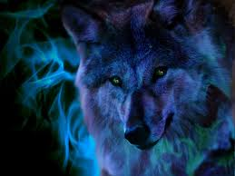 cool wolf spirit pic