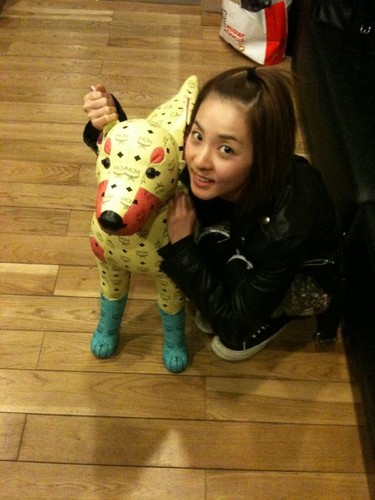 cute small dara