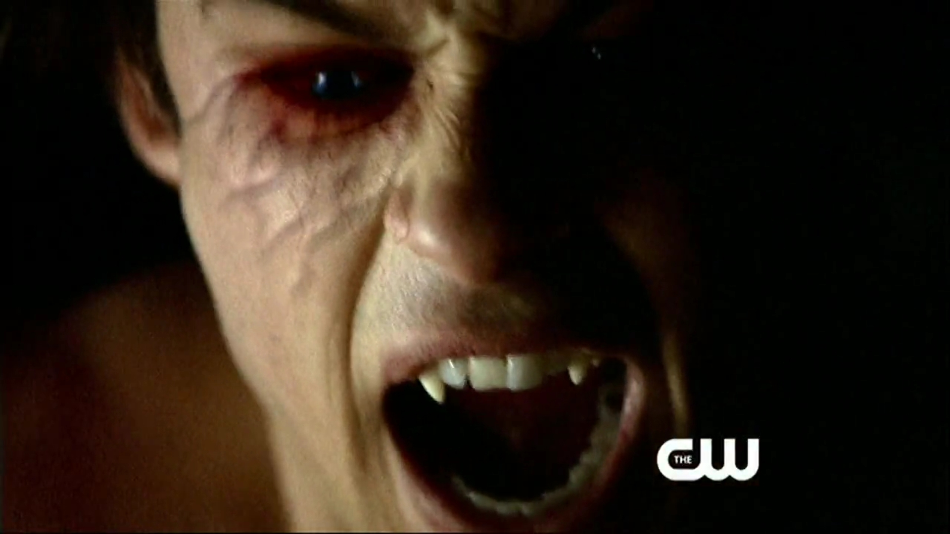 vampire diaries how to become a vampire