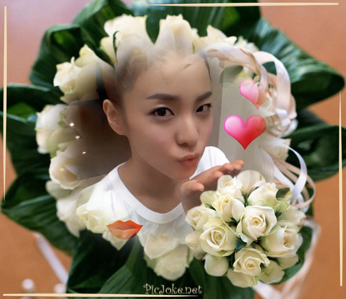 DARA 2NE1 wallpaper probably containing a bouquet entitled dara 2NE1 cute moment