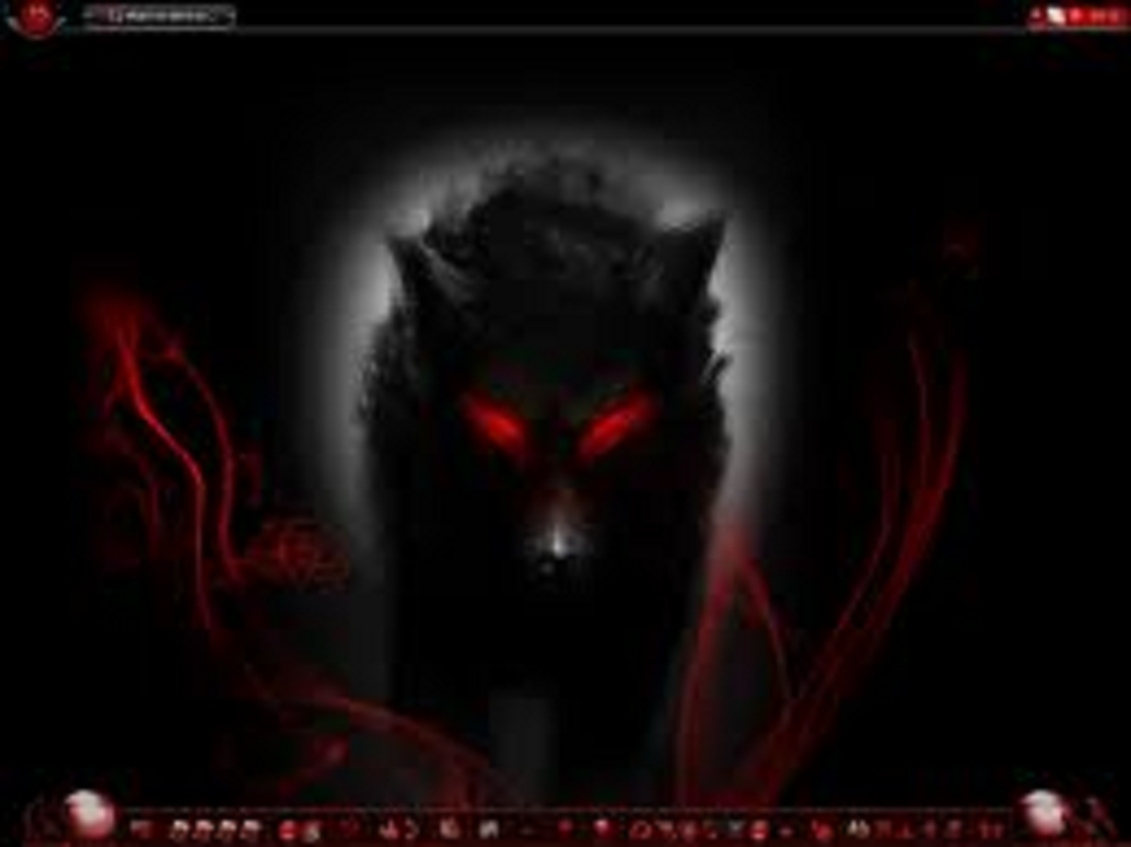 Wolf lovers place dark wolf