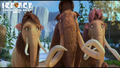 family - ice-age-4-continental-drift photo
