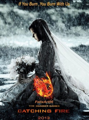 Catching Fire wallpaper titled fanart posters