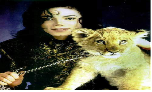 mj and his lion cub