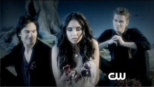 Vampire Diaries Hintergrund containing a portrait entitled promo tvd