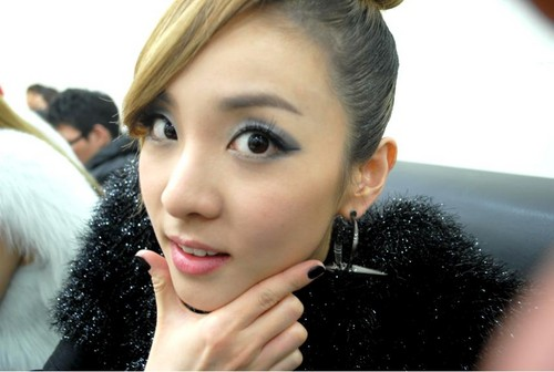 DARA 2NE1 Hintergrund probably with a portrait entitled sandara park 2ne1