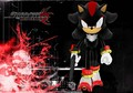 shadow the gunner - shadow-the-hedgehog photo