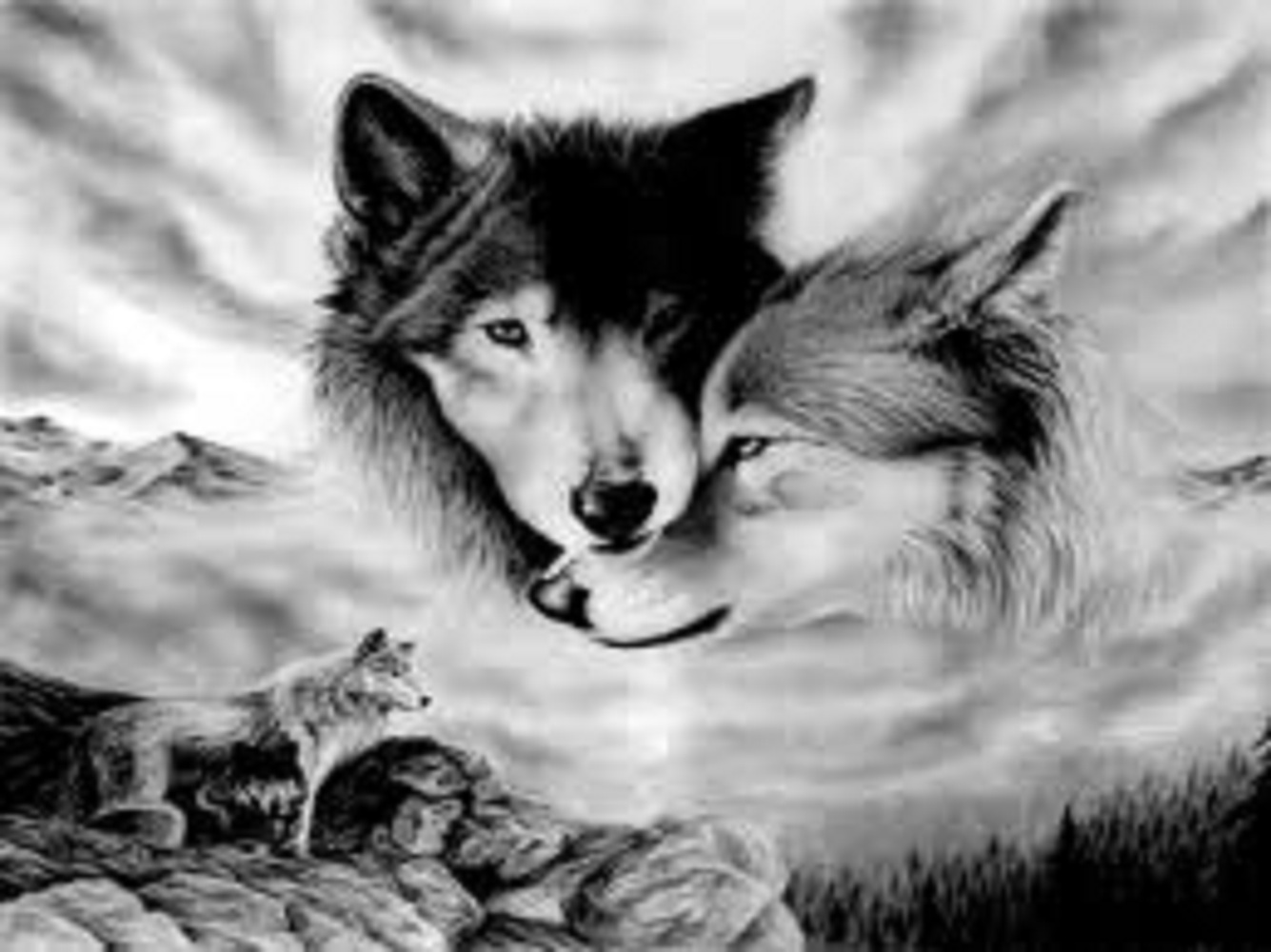 Wolf lovers place spirit wolves