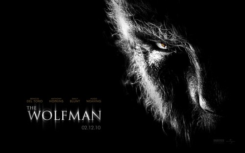 Werewolves پیپر وال entitled the Wolfman
