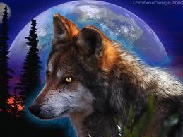 늑대 in da night