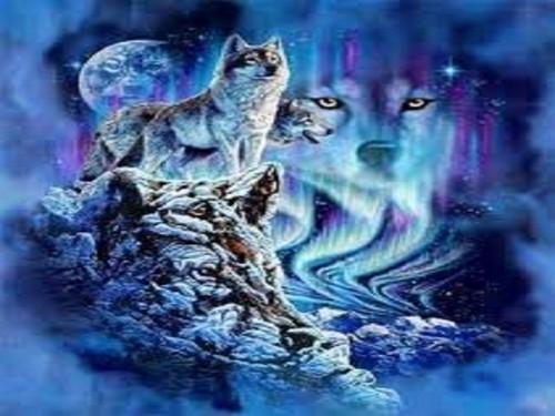 狼, オオカミ spirits