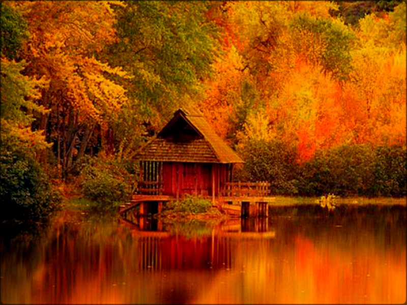 autumn images autumn hd wallpaper and background
