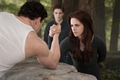 """Breaking Dawn - Part 2"" promotional stills in HQ. - twilight-series photo"