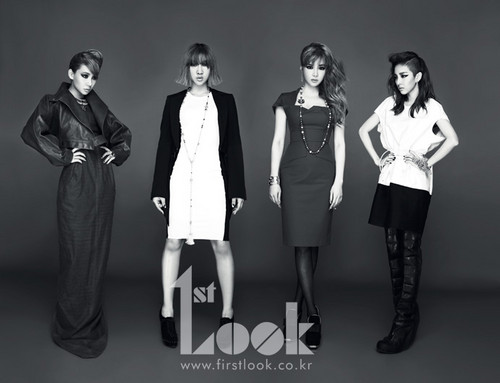 DARA 2NE1 Hintergrund called 2ne1 1st look mag