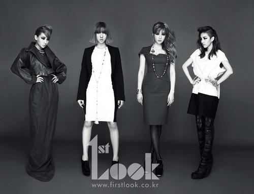 2NE1 1st look mag