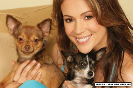 Alyssa Milano >> Healty Pet