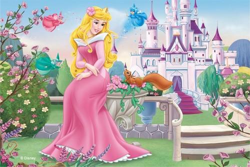 Princess Aurora karatasi la kupamba ukuta entitled Aurora