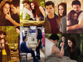BDp2 - twilight-series photo