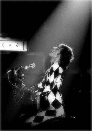 Beautiful Freddie