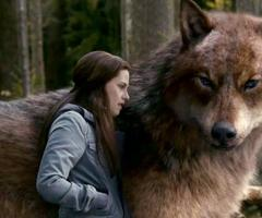 Bella and loup Jacob,Eclipse