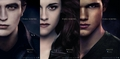 Brazilian poster part2 - twilight-series photo