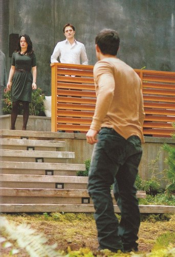 Breaking Dawn part 2: Bella vs Jacob