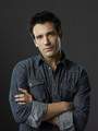 Colin Donnell as Tommy
