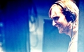 David - david-guetta wallpaper