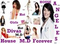 DivasHouse - house-md photo