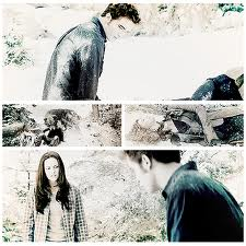 Edward and Bella in 爱情
