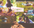 Edward and Bella in their meadow - twilight-series photo