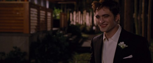 Edward in Breaking Dawn part 1
