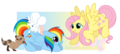 Fluttershy and pelangi Dash Reversed