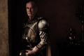 Barristan Selmy - game-of-thrones photo