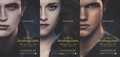 German poster part2 - twilight-series photo