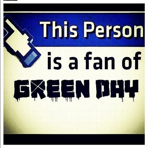 Green Day Fan