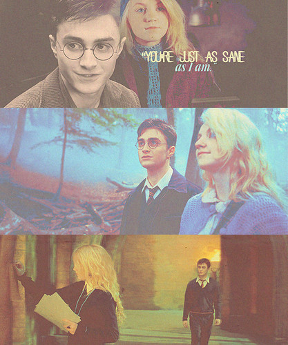 Harry & Luna