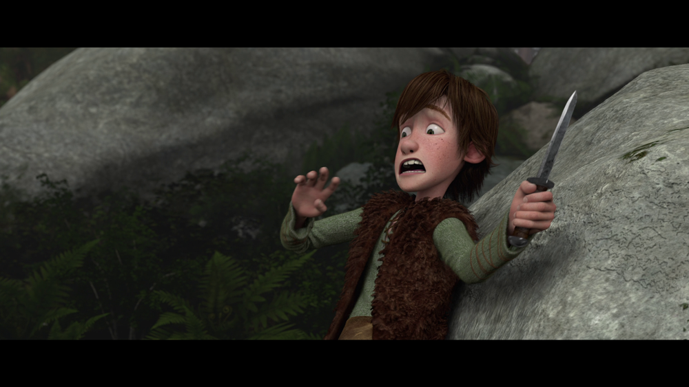pov shots in how to train your dragon