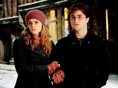 ハリー&ハーマイオニー