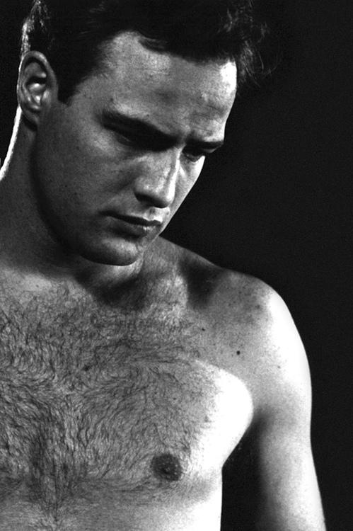 Fue un hombre el gran amor de Marlon Brando?