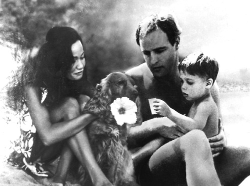 Marlon Brando images Marlon Brando pictured with Tarita Teriipia and their son, Teihotu Brando, 1965. wallpaper and background photos