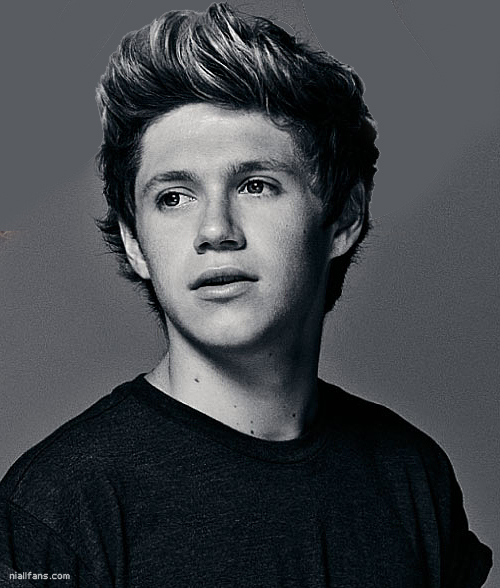 Niall Niall Horan Photo 32338003 Fanpop